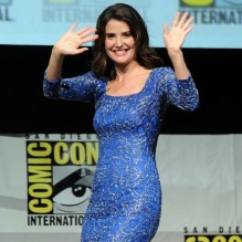 comic-con-2013-marvel-studios-panel-26